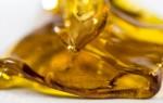 Особенности и приготовление медовой сыты для подкормки пчел
